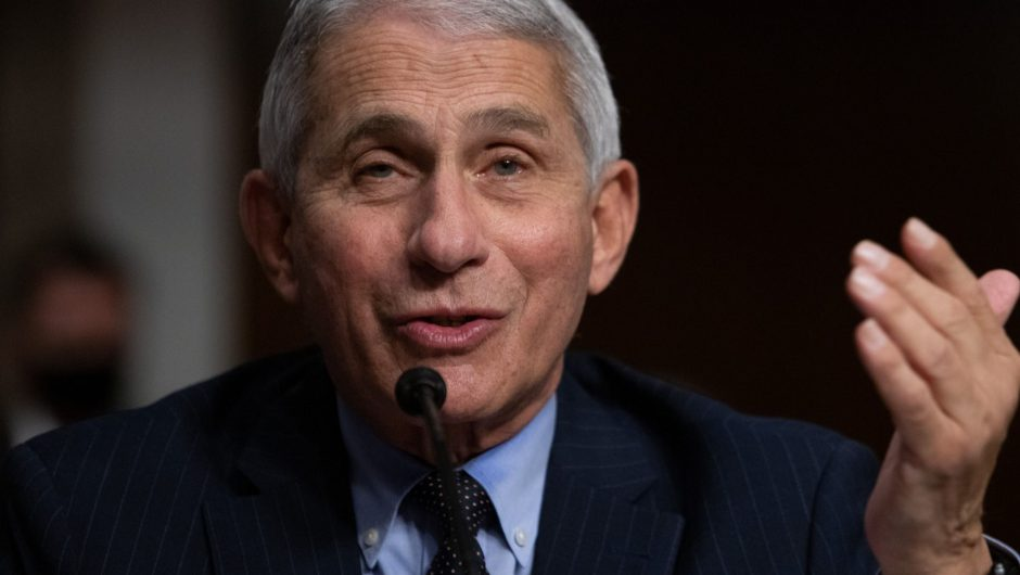 Fauci says Americans should 'double down' on COVID-19 precautions as we reach the final stretch before the first vaccines