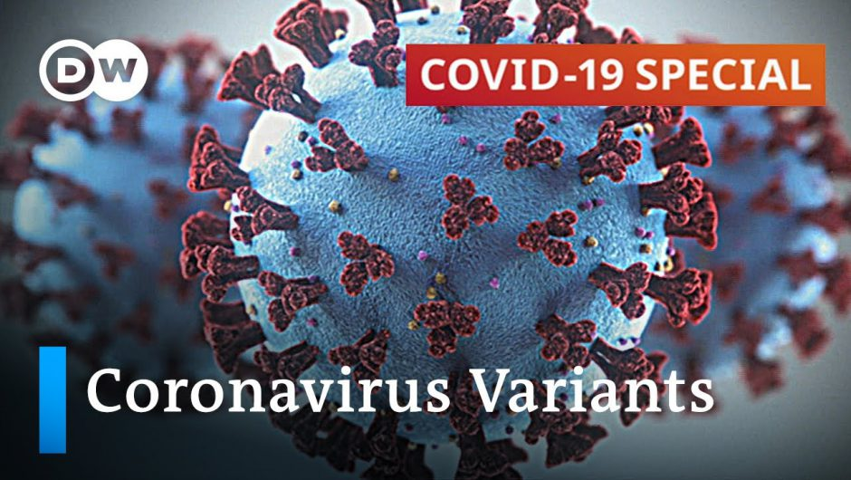 How to stop the spread of new coronavirus variants? | COVID-19 Special