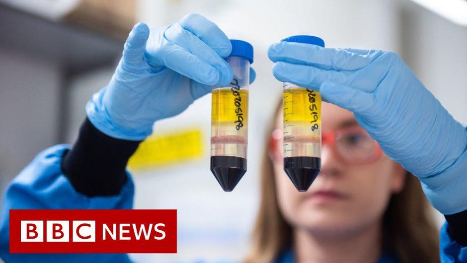 Coronavirus: When can I get the COVID-19 vaccine? – BBC News