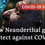 Ancient genetics are facing the coronavirus   COVID-19 Special